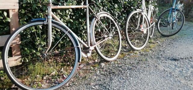 """Adotta una Bici – Ecco le nostre bici rigenerate """"pronte all'uso""""!"""